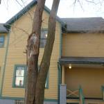 A Christmas Story House - side of house
