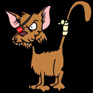 Shitz da Cat