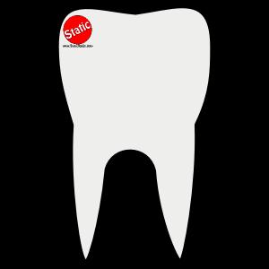 Handyman Dentist