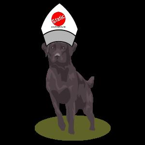 Dog Pew